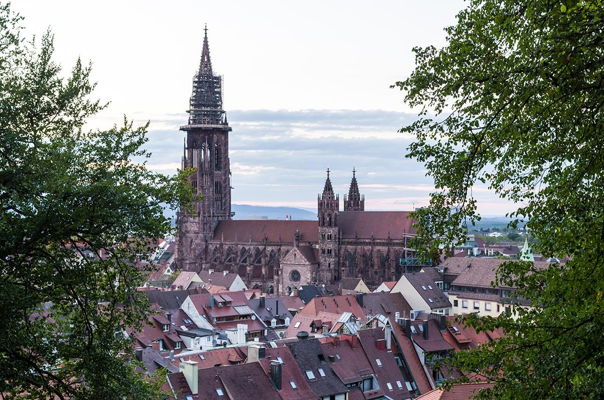 Das-Freiburger-Münster