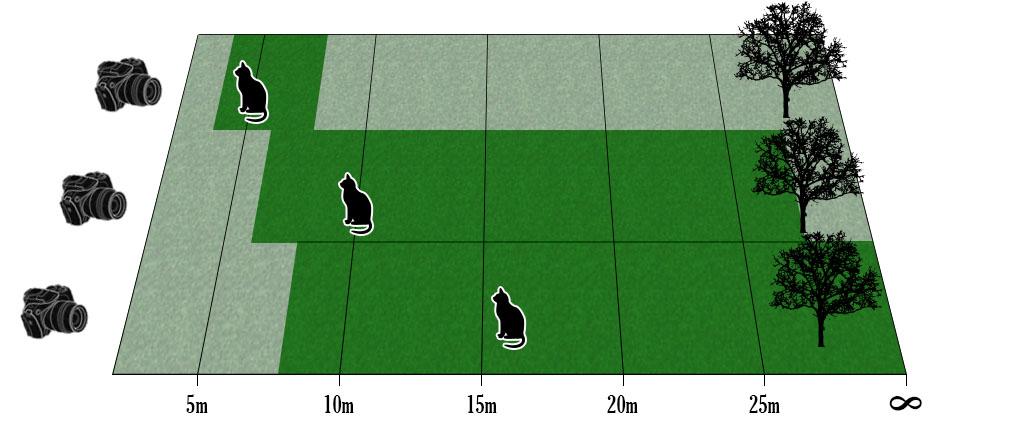 Schärfentiefe-Entfernung.jpg