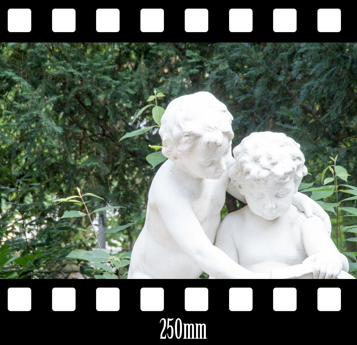 bsp_250mm