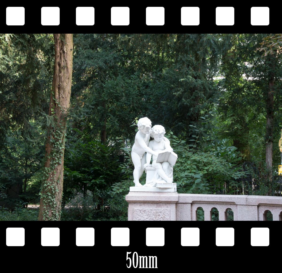 bsp_50mm