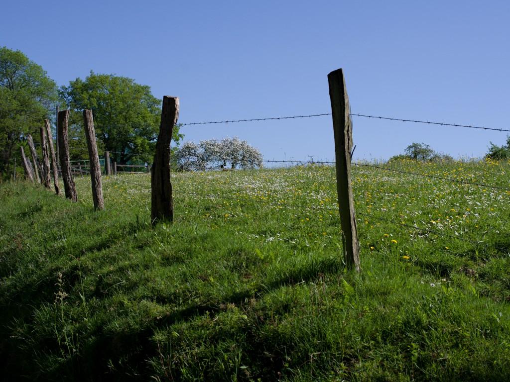 Stindertal-I-1024x768.jpg
